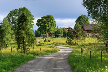 Farmland in Tiveden, Swedenの写真素材 [FYI02210553]