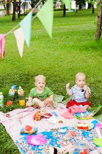 Baby boys at birthday picnicの写真素材 [FYI02210607]