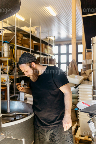A man checking coffee beans in Swedenの写真素材 [FYI02210653]