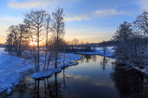 Bare trees by river during winter in Swedenの写真素材 [FYI02210764]