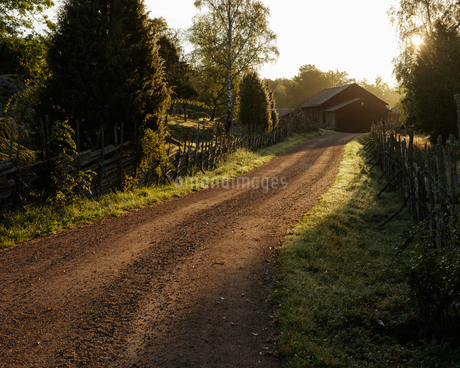 Rural road in Smaland, Swedenの写真素材 [FYI02210779]