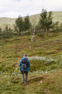 Rear view of man hiking in Sodra Lapland, Swedenの写真素材 [FYI02210865]
