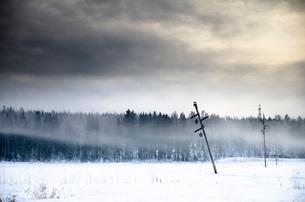 Broken power lines by forest during winter in Vantaa, Finlandの写真素材 [FYI02210904]