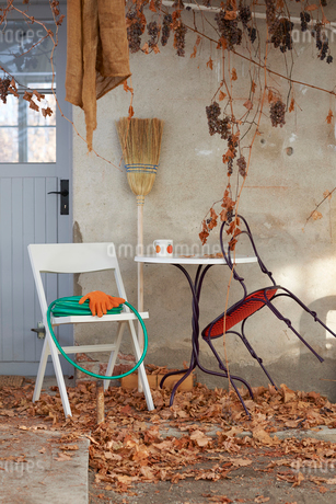 Chairs and a table in a garden in autumn in Swedenの写真素材 [FYI02210924]