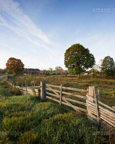 Fence on farm in Smaland, Swedenの写真素材 [FYI02210932]