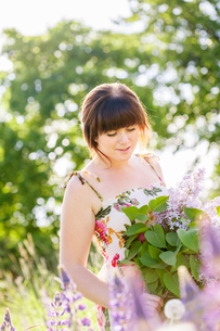 Young woman in field of common lilacsの写真素材 [FYI02210937]