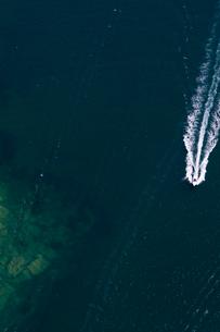 Speedboat in Sydney Harbour in Sydney, Australiaの写真素材 [FYI02210952]