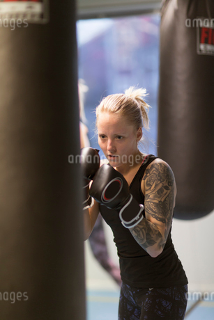 Young woman punching a boxing bag in a gymの写真素材 [FYI02210956]