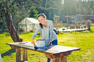 Finland, Paijat-Hame, Heinola, Mid adult woman oiling wooden table in gardenの写真素材 [FYI02210961]