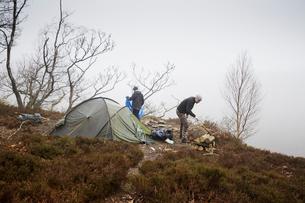 Sweden, Skane, Soderasen, Two men camping on grassy hillの写真素材 [FYI02210998]