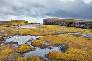 Rock cliffs in Shetland, Scotlandの写真素材 [FYI02211086]