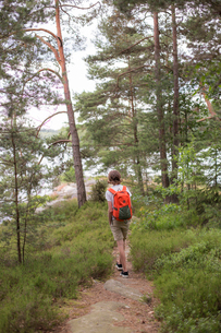 Teenage boy on a hiking trail in Lerum, Swedenの写真素材 [FYI02211102]