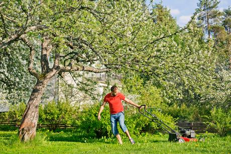 Mid adult man mowing lawn in Heinola, Finlandの写真素材 [FYI02211168]