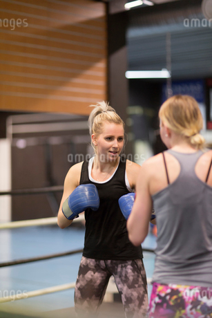 Two women sparring in a boxing classの写真素材 [FYI02211238]