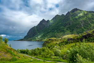 Mountains above the sea in Austvagoya Island in Norwayの写真素材 [FYI02211241]
