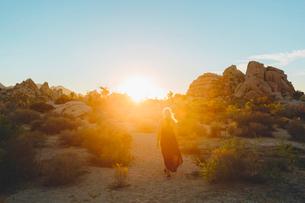 USA, California, Joshua Tree National Park, Woman wearing dress hiking at sunsetの写真素材 [FYI02211257]