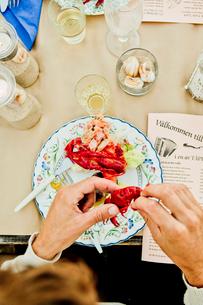 Hands of man eating crayfishの写真素材 [FYI02211321]