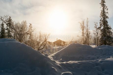 Winter sunset in Harjedalen, Swedenの写真素材 [FYI02211413]