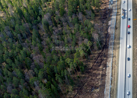 Aerial view of forest and highway in Swedenの写真素材 [FYI02211468]