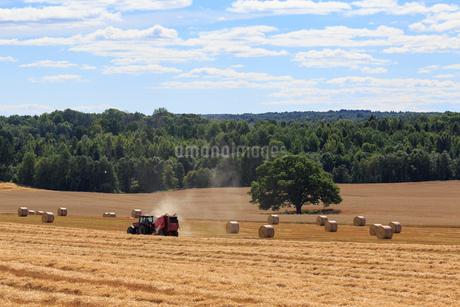 Tractor in a crop field in Hidinge, Swedenの写真素材 [FYI02211514]