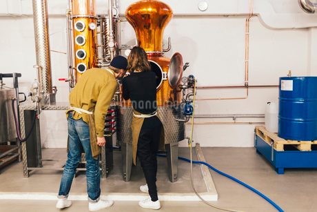 Workers at gin distillery in Swedenの写真素材 [FYI02211520]