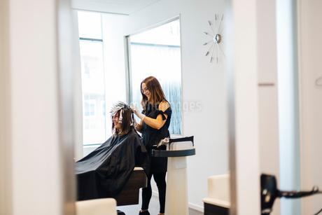 Hairdresser coloring clients hair in Swedenの写真素材 [FYI02211711]