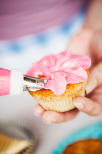 Hands of woman icing cupcakes in Swedenの写真素材 [FYI02211720]