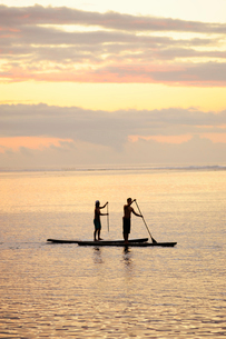 Men paddleboarding at sunrise in Bora Boraの写真素材 [FYI02211759]
