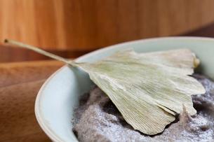 Organic herbal cream mask with ginkgo leafの写真素材 [FYI02211765]