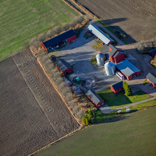 High angle view of buildings on farm in Ulva Kvarn, Swedenの写真素材 [FYI02211768]