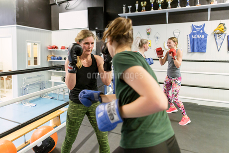 Two women sparring in a boxing classの写真素材 [FYI02211860]