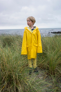 A young boy in the tussock grass at the beach in wet weather gearの写真素材 [FYI02211987]