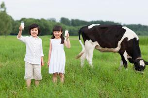 Happy children holding glasses of milk with cattle grazing iの写真素材 [FYI02213406]