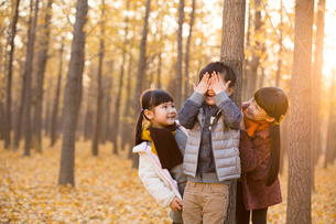 Three children playing hide and seek in autumn woodsの写真素材 [FYI02217242]