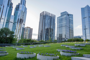 Modern buildings and green area, Chinaの写真素材 [FYI02217862]