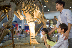 Young father and children in museum of natural historyの写真素材 [FYI02218131]