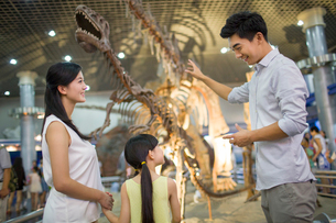 Young family in museum of natural historyの写真素材 [FYI02218252]