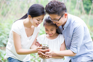 Young family holding a seedling togetherの写真素材 [FYI02218321]