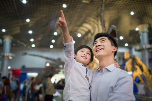 Young father and son in museum of natural historyの写真素材 [FYI02218494]