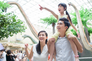 Young family in museum of natural historyの写真素材 [FYI02218526]
