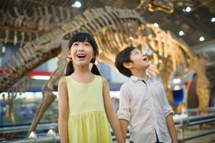 Children in museum of natural historyの写真素材 [FYI02218828]
