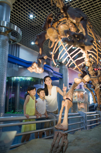 Young mother and children in museum of natural historyの写真素材 [FYI02218877]