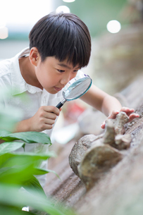 Little Chinese boy in museum of natural historyの写真素材 [FYI02218898]