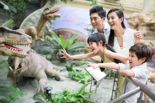 Young family in museum of natural historyの写真素材 [FYI02219080]