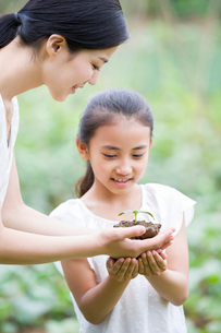 Young mother giving daughter a seedlingの写真素材 [FYI02219132]
