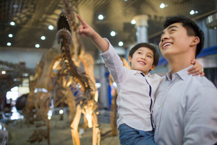Young father and son in museum of natural historyの写真素材 [FYI02219222]