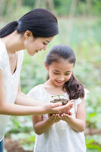 Young mother giving daughter a seedlingの写真素材 [FYI02219276]