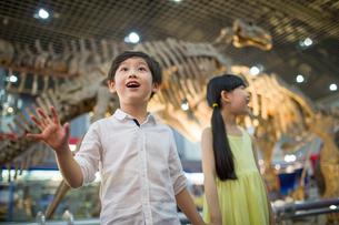 Children in museum of natural historyの写真素材 [FYI02219469]