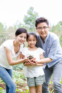 Young family holding a seedling togetherの写真素材 [FYI02219570]