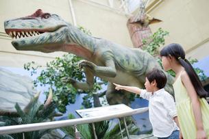 Children in museum of natural historyの写真素材 [FYI02219705]